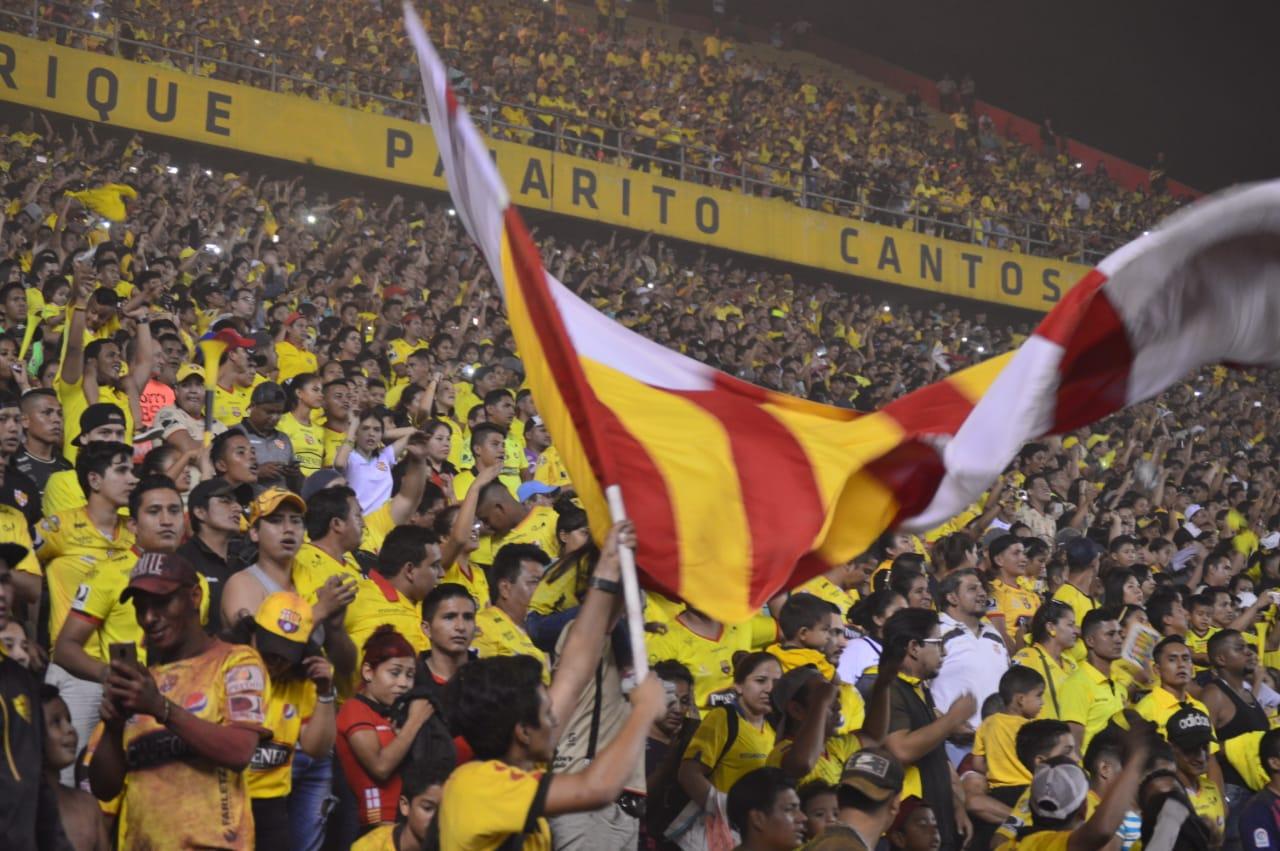 Photo of ¿Los ´cetáceos' en la Noche Amarilla?, Entérate el Motivo