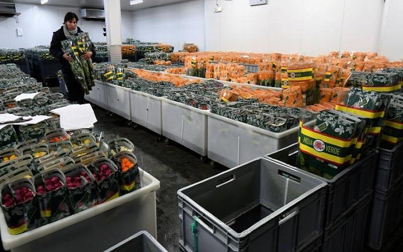 Photo of Florícolas incursionan en la venta online y a domicilio, sin dejar de lado la exportación tradicional
