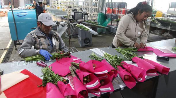 Photo of Afectaciones en exportaciones hacia China por coronavirus, según expertos