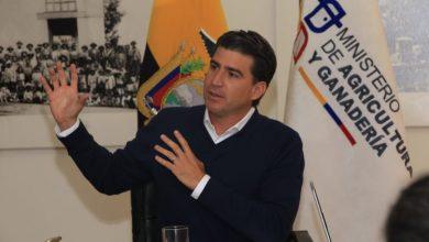 Photo of Lazo: Estamos perdiendo alrededor de $ 300 millones en exportación