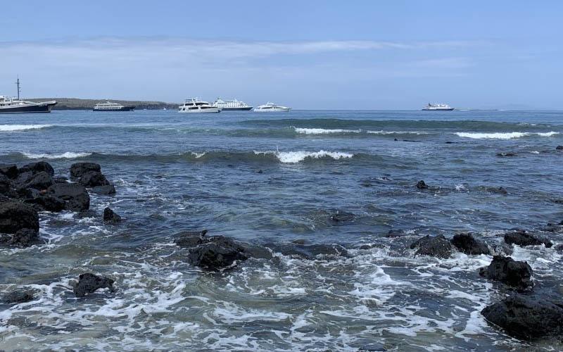 Photo of Galápagos: ¿Cómo redescubrir este paraíso después de casi 500 años?