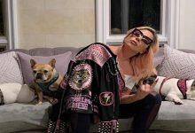 Photo of Lady Gaga pospone el lanzamiento de su nuevo disco por el coronavirus