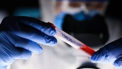 Photo of Coronavirus : qué se sabe sobre la mutación del SARS-CoV-2 (y qué significa esto para la lucha contra la pandemia)