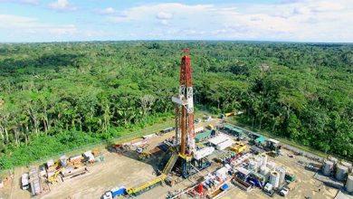 Photo of Ecuador recibe $7,65 por barril de las petroleras privadas