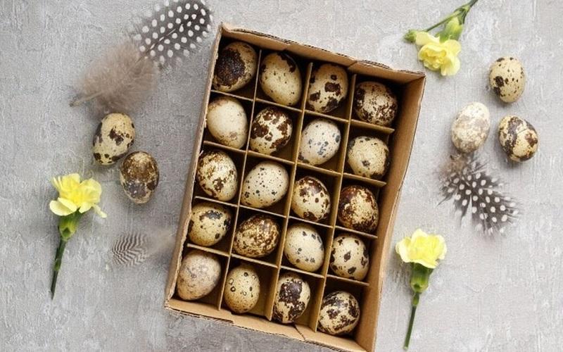 Photo of Huevos de codorniz: 5 motivos saludables para pasarte a la alternativa al huevo de gallina