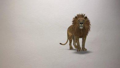 Photo of El truco de Google para poner animales 3D en tus fotos