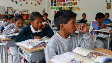 Photo of No hay despidos de maestros en el país, Creamer