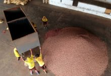 Photo of Cacao se sigue produciendo con dificultades de movilización