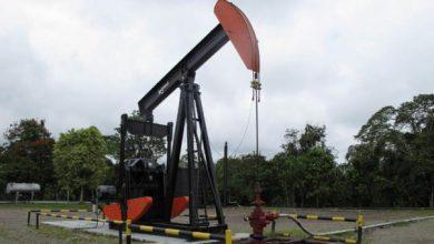 Photo of Precio del petróleo WTI sube a 26,31 dólares