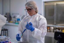 Photo of Pasaporte COVID: identificar a los inmunes para volver a la normalidad