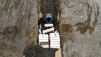 Photo of Nueva York «devastada» ante imágenes de entierros temporales en fosa común