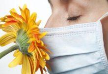 Photo of Coronavirus: qué evidencia hay de que la pérdida del sentido del gusto y el olfato sea uno de los síntomas de covid-19