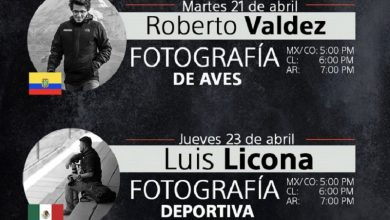 Photo of Continúan los talleres online en vivo y gratuitos