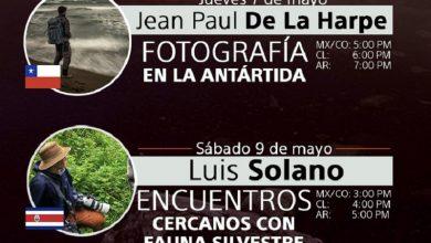Photo of Agenda de mayo para talleres online en vivo y gratuitos para fotógrafos