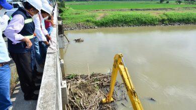 Photo of Limpieza de palizada y desazolve en bases de puente de Santa Lucía para evitar su colapso