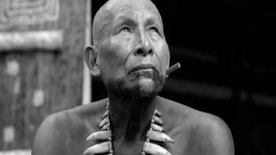 Photo of Actor indígena de «El abrazo de la serpiente» fallece en Amazonía colombiana