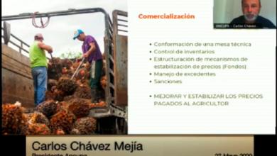 Photo of Palmicultores piden a la Asamblea aprobar la Ley para mejorar la producción, comercialización e industrialización de la palma aceitera
