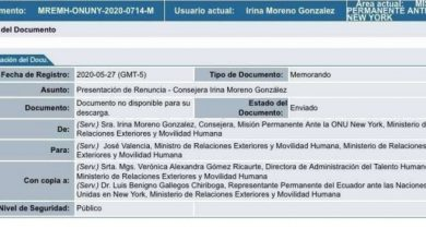 Photo of Canciller aceptó renuncia de Irina Moreno a consejería de Ecuador ante ONU