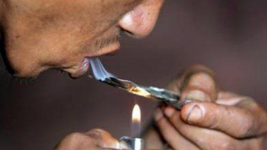 Photo of Los precios de drogas bajan en Tijuana pero aumentan en EEUU