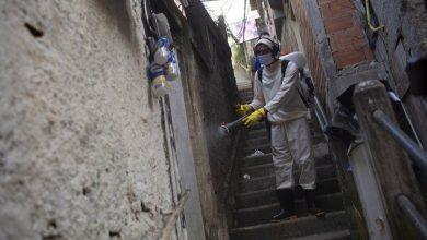 Photo of COVID-19: Brasil promete publicar cifras en 48 horas