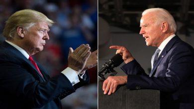 Photo of Biden supera hasta por 12 puntos a Trump en encuestas