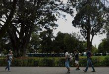 Photo of Gimnasios, peluquerías y parques de Quito se reabrirán desde este 3 de junio
