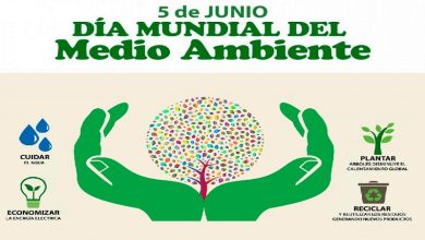 Photo of Día Mundial del Medio Ambiente