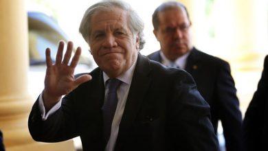 Photo of OEA denuncia a gobierno de Nicaragua