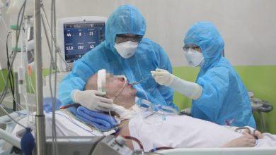 Photo of Tratamiento del coronavirus: el extraordinario caso del «paciente 91» que mantuvo en vilo a todo un país