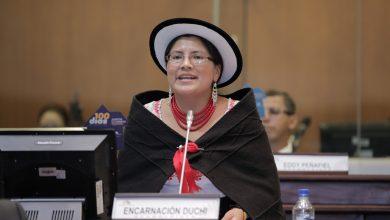Photo of Nuevo Código de la Niñez plantea que protección económica de los hijos se extiende hasta los 24 años, asegura Encarnación Duchi