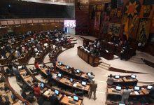 Photo of Ejecutivo vetó los proyectos que regulan la producción y comercialización de la palma aceitera, y el control del microtráfico y consumo de drogas en espacios públicos