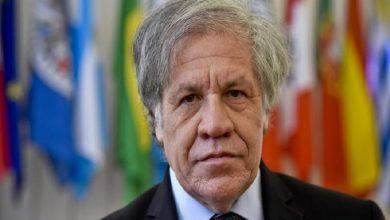 """Photo of OEA respalda a Bukele: """"no debemos inventar dictaduras donde no las hay"""""""