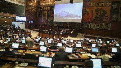 Photo of El 80 % de los asambleístas está habilitado para una reelección en las próximas elecciones de 2021