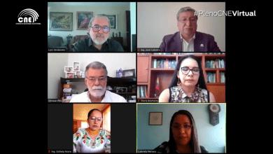 Photo of Consejo Electoral abre nueva etapa de 30 días para revisar las pruebas de descargo a cuatro movimientos políticos