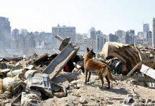 Photo of ONU llama a recaudar US$565 millones para Líbano