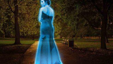 Photo of Zoom, Skype… crean máquina de hologramas para videollamada
