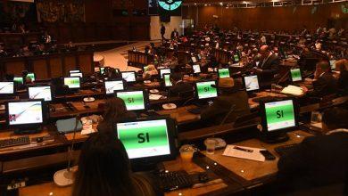 Photo of Retraso en reglamento de Ley Emprendimiento perjudica a emprendedores y aún deben esperar para recibir todos los beneficios