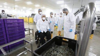 Photo of China levantó suspensión de exportar camarón a una de tres empresas ecuatorianas
