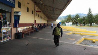Photo of COE nacional emite nuevas resoluciones sobre el transporte terrestre en Ecuador