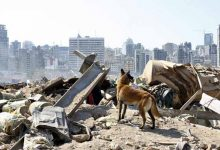 Photo of Presidente libanés habla de posible «cohete o bomba» como causa de las explosiones en Beirut