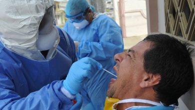 Photo of Casos de coronavirus en Ecuador, al domingo 2 de agosto: 86 524 confirmados y 5750 fallecidos