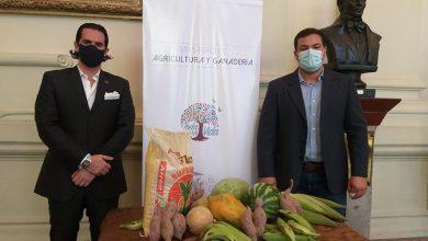 Photo of [Audio] Ministerio de Agricultura retoma freia «De la mata a la mesa»