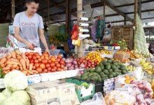 Photo of Por Decreto Ejecutivo se establece la creación de bono nutricional de USD 240 para familias vulnerables