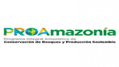 Photo of Ecuador consigue $18,5 millones de dólares para el cuidado de sus bosques