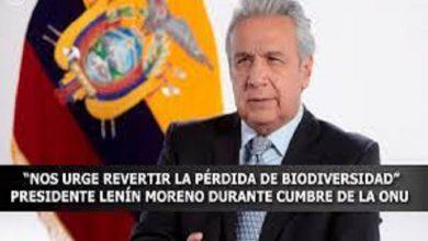 """Photo of """"Nos urge revertir la pérdida de biodiversidad"""", presidente Lenin Moreno durante Cumbre de la ONU"""