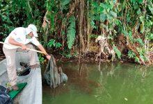 """Photo of 22.368 kilogramos de desechos fueron recuperados de playas, ríos, lagos y lagunas como parte de la campaña """"Tu basura no es parte del paisaje"""""""