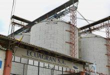 Photo of Ecuagran propone un concordato a sus acreedores para pagar las deudas