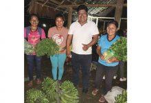 Photo of Jaime Vargas prolongaría su mandato en la Conaie durante este año