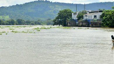 Photo of Interagua toma acciones ante presencia de algas en el río Daule