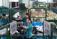 Photo of China investigará a las plataformas de comercio electrónico